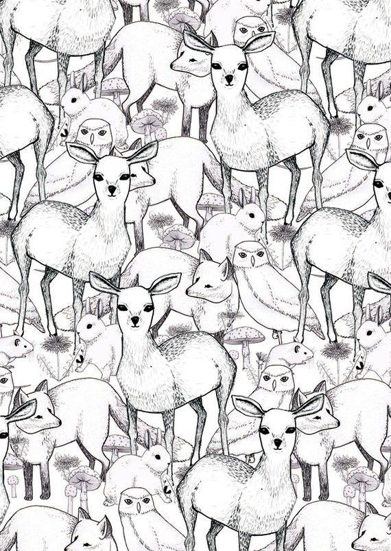 Coloriage, des hiboux, lapin, renards,faons.