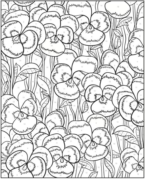 Fleurs pensées