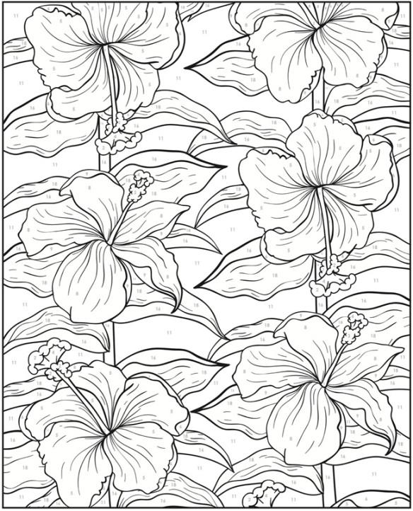 Fleurs Lys
